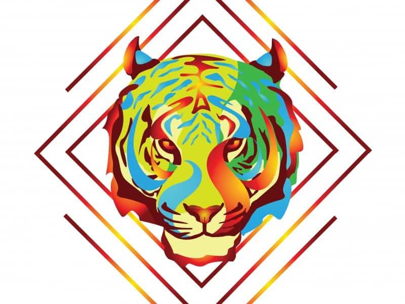 Fire Tiger Design